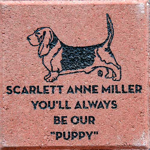 Animal Shelter Brick Fundraiser